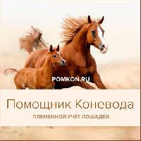 pomkon_5_book.jpg